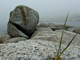 Tony G. photo of rocks on seashore